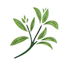 Žajbelj Logo